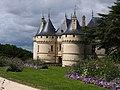 Chaumont sur Loire Le Château Vue n°3.JPG