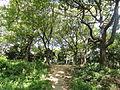 Chausuyama battlefield, May 1615, Osaka - DSC05812.JPG