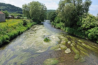 Charency-Vezin - The Chiers River in Charency-Vezin