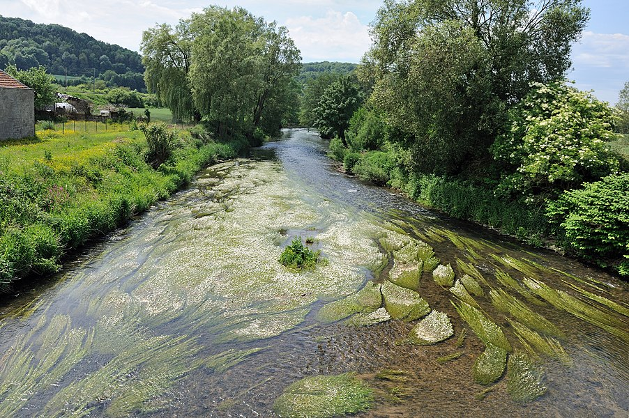 The river Chiers seen from the bridge that crosses the river at Charency-Vezin, department of Meurthe-et-Moselle, region of Lorraine (France)