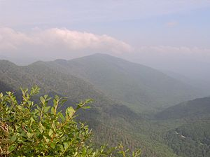 Chimney Tops - Sugarland Mountain, looking northwest from the summit of Chimney Tops.
