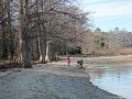 Chippokes Plantation State Park (6617842731).jpg