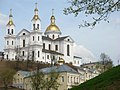Church of the Assumption in Viciebsk - panoramio (3).jpg