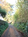 Churston Ferrers, private lane - geograph.org.uk - 1574980.jpg