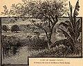 City of Houston (1890) (14763178512).jpg