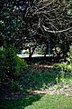 City of London Cemetery from South Gate Road to Chapel Avenue 1.jpg