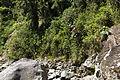 Cliff Jumping (5479988369).jpg