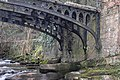 Clydach Gorge Iron Bridge - geograph.org.uk - 299479.jpg