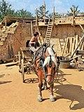 Coachwoman moving his horse back.jpg