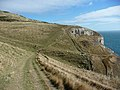 Coast path near Dancing Ledge - geograph.org.uk - 1626602.jpg