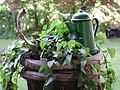 Coffee Pot and Planter.jpg