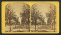 Colorado Springs, by Nims, F. A. (Franklin A.) 2.png