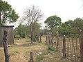 Comunidad Aborigen Tape Iguapegui Porcelana - panoramio.jpg