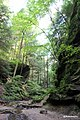 Conkle's Hollow Valley, Hocking Hills, OH - panoramio.jpg