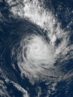 Cyclone Cook tropical cyclone