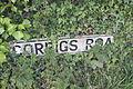 Corrigs Road, County Down, May 2011 (01).JPG