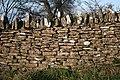Cotswold Stone Wall, Bredon Hill - geograph.org.uk - 301506.jpg