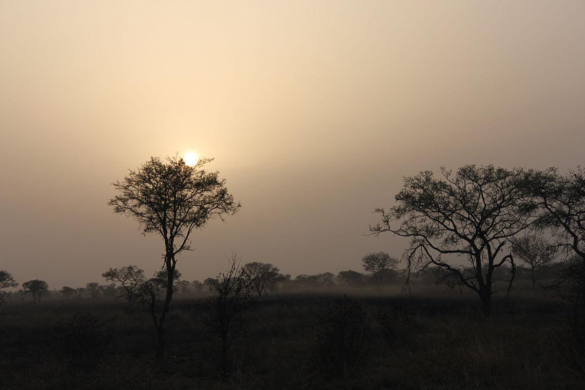 Coucher de soleil Pendjari.JPG