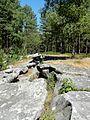 Coyolles (60), la cave du Diable en forêt de Retz 7.jpg