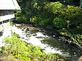 Creek behind the streets in Ketchikan - panoramio.jpg