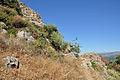 Crete Polyrrhenia R03.jpg