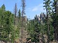 Custer State Park (9609073983).jpg