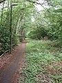 Cycle path and footway, north of Woking by A320 - geograph.org.uk - 171631.jpg