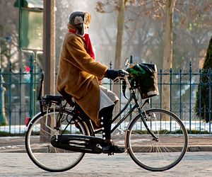 City bicycle - Typical European city bike and corresponding erect riding posture