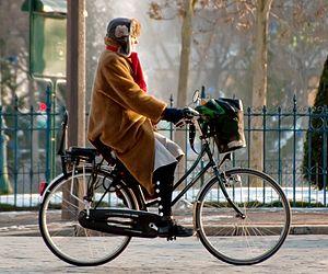 Utility Bicycle Wikipedia