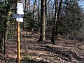 Cyklotrasa - smerovník ^Directional - panoramio.jpg