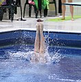 DHM Wasserspringen 1m weiblich A-Jugend (Martin Rulsch) 161.jpg