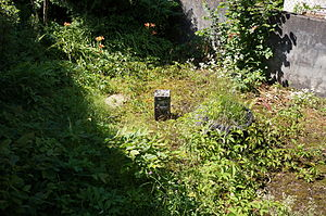 Dalle puits n°7.JPG