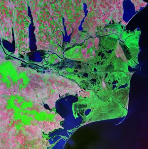 Delta Dunaje - satelitní fotografie z roku 2000. Na snímku jsou jasně vidět tři hlavní ramena Dunaje, jezera a mořské kosy.