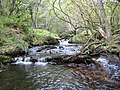 Dartmoor, Becka Brook - geograph.org.uk - 1013139.jpg