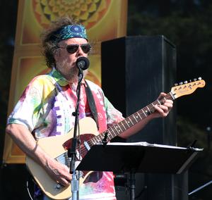 David Nelson (musician) - Image: David Nelson
