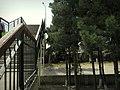 Day - panoramio (2).jpg
