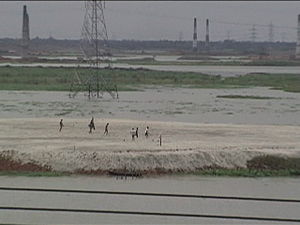 Turag River - An industrialized and obstructed section of the river