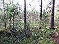 Degučių sen., Lithuania - panoramio (178).jpg