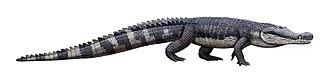 Deinosuchus - Life restoration of D. rugosus