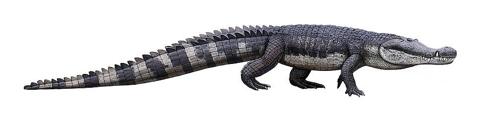 Deinosuchus illustration Andrey Atuchin