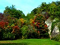 Der Herbst naht - bei Simmertal - panoramio.jpg