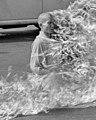 Detail, Thích Quảng Đức self-immolation (cropped).jpg