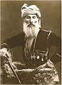 Dimitri Vanidze. 1865.jpg