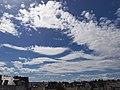 Diverse Altocumulus-Formen und Cumulus.jpg