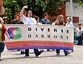Diverse Harmony marching-2.jpg