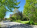 Dolberg, 59229 Ahlen, Germany - panoramio (2).jpg