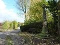 Dormagen - Zons - geo.hlipp.de - 6113.jpg