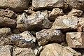 Dourdan castle stones.jpg