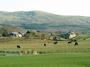 Agriculture in Wales - Hill farm with Welsh Black cattle