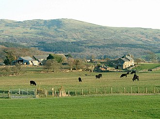 Geography of Wales - Hill farm with Welsh Black cattle